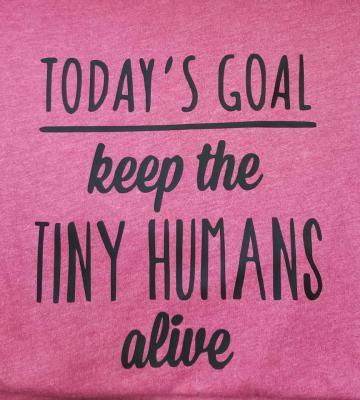 Today's Goal - Raspberry